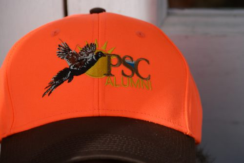 decorative image of DSC_79481-Copy-e1484081864656 , Pheasant Hunt 2016 2017-01-10 14:57:27