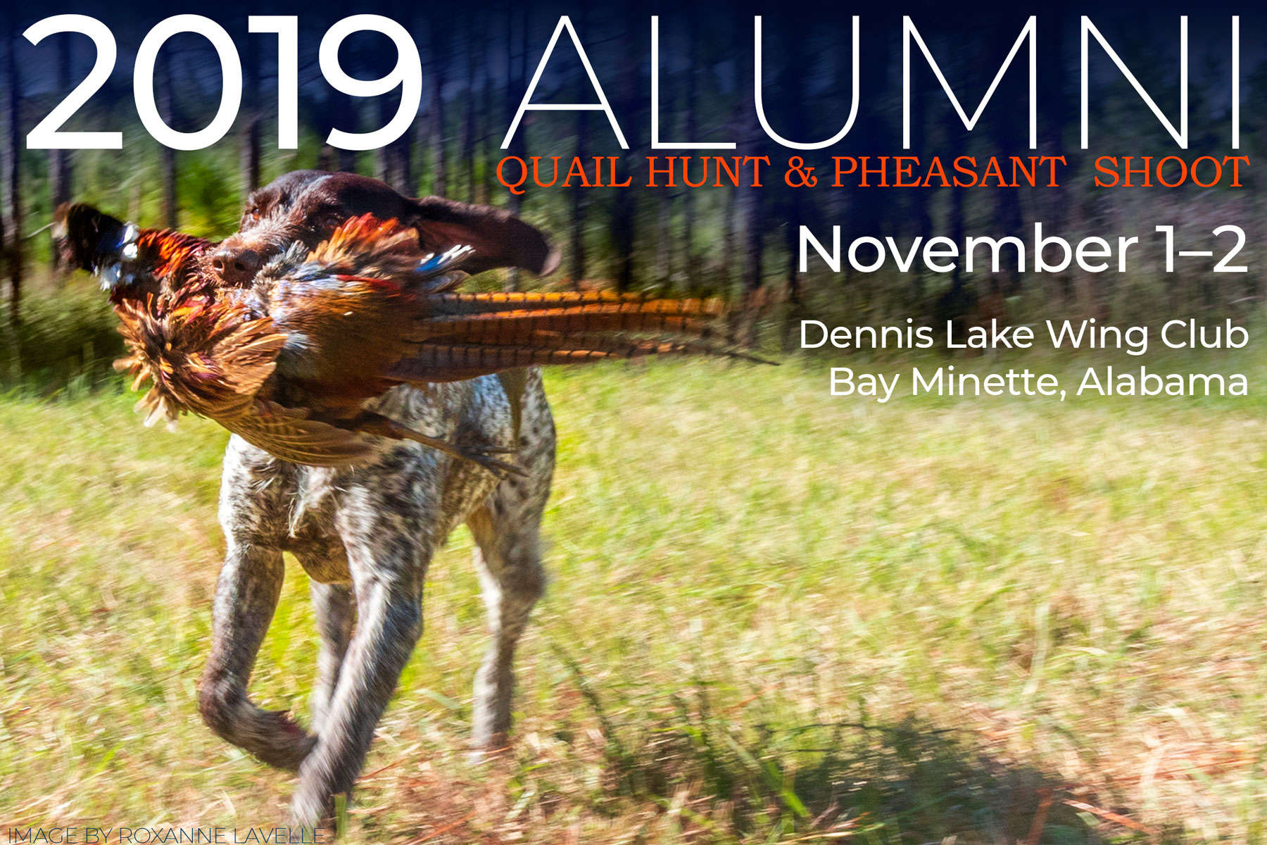 decorative image of 2019-Pheasant-Hunt-cover , Pheasant Shoot & Quail Hunt 2019 2019-11-04 09:58:23
